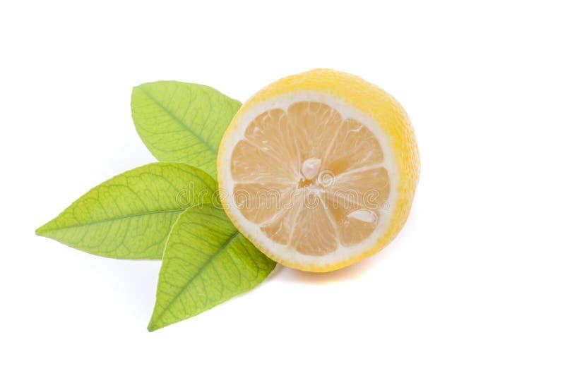 一半与叶子的柠檬。 免版税库存照片