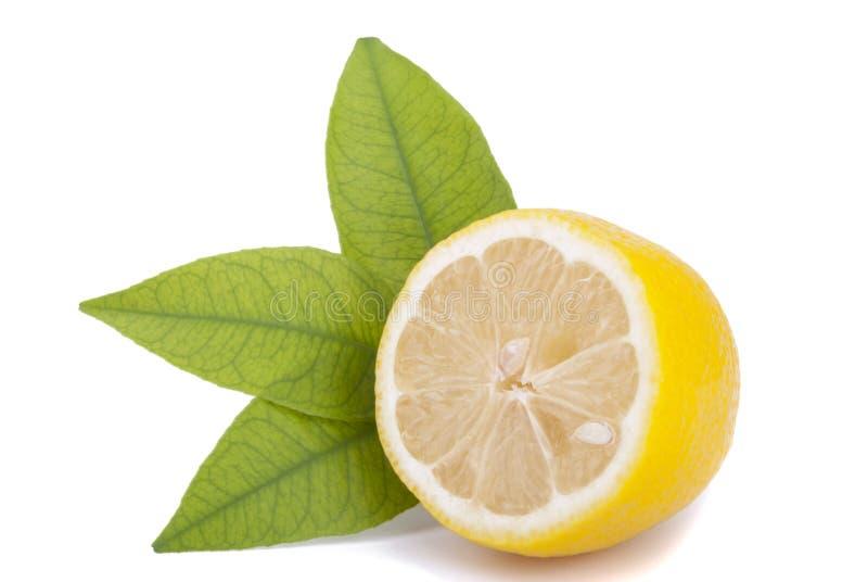 一半与叶子的柠檬。 库存照片
