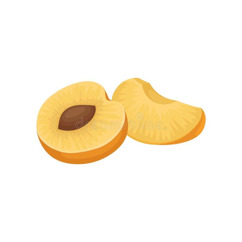 一半与骨头和小切片的成熟杏子 食物健康自然 水多的果子 有机产品 平的传染媒介象 库存例证