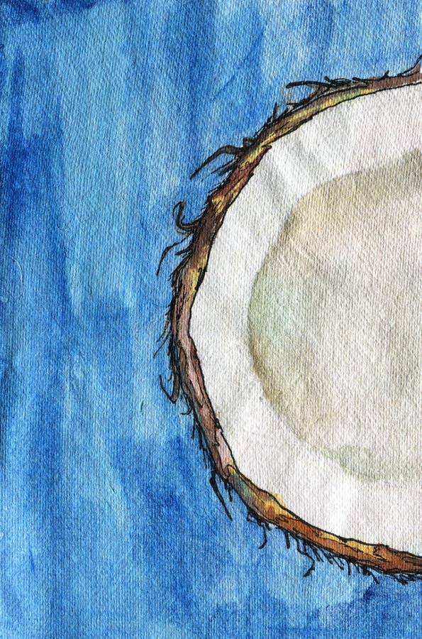 一半在黄色背景,手拉的水彩例证的石榴 r 一半在brigh的被切的椰子 向量例证