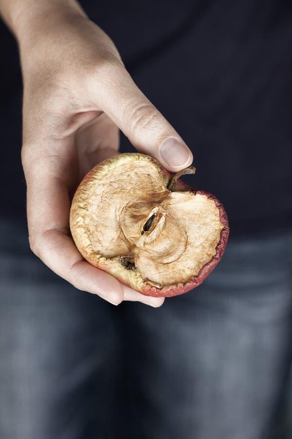 一半老腐烂的苹果 库存照片