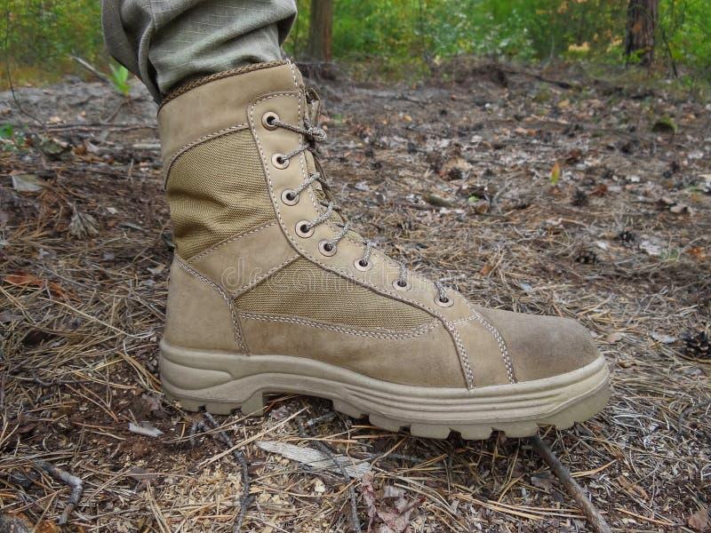 一双灰色高鞋子徒步本质上在森林里 库存图片