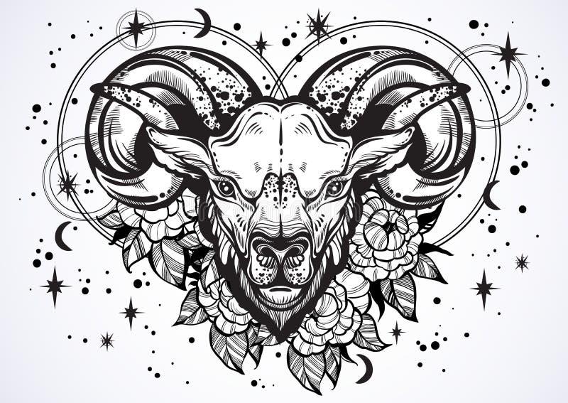 一只公羊的手拉的美丽的艺术品与牡丹花和占星术的签字  白羊星座,黄道带标志 时髦传染媒介艺术 皇族释放例证