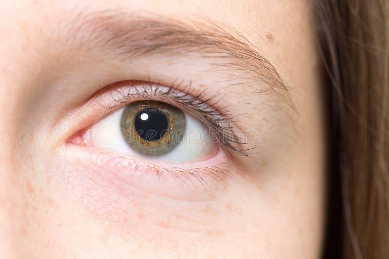 一只十几岁的女孩眼睛 免版税库存图片