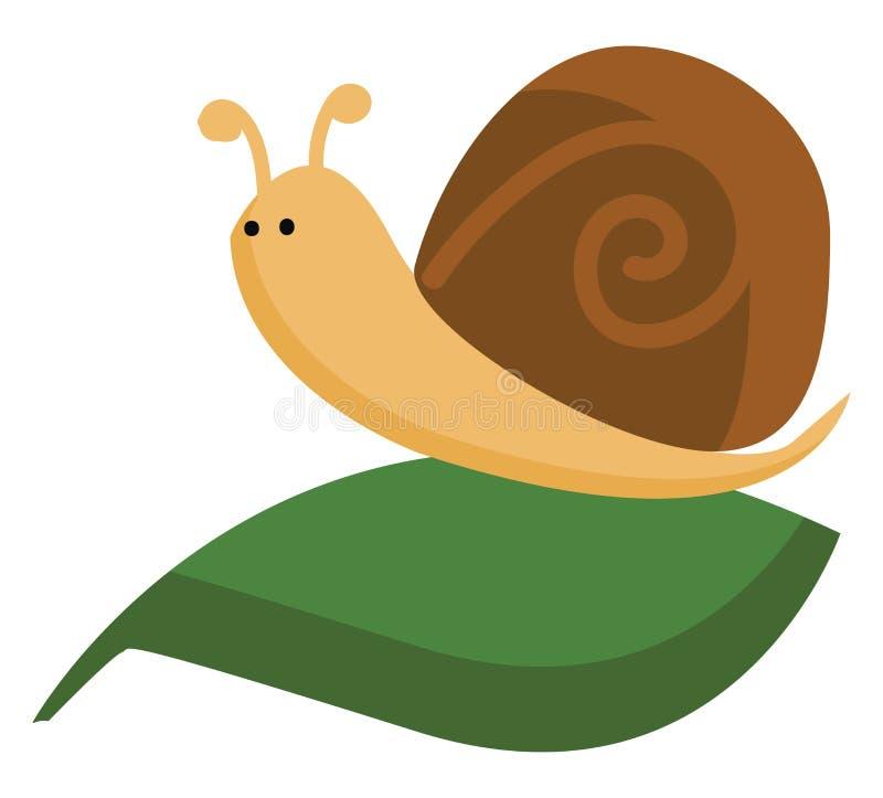 一只可爱的棕色蜗牛爬在深绿色叶子矢量图上或彩色插图上 皇族释放例证