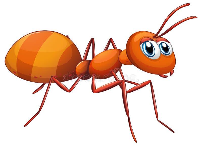 一只大蚂蚁 皇族释放例证