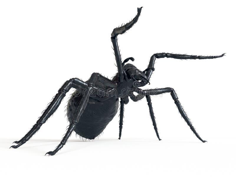 一只巨型蜘蛛 库存例证