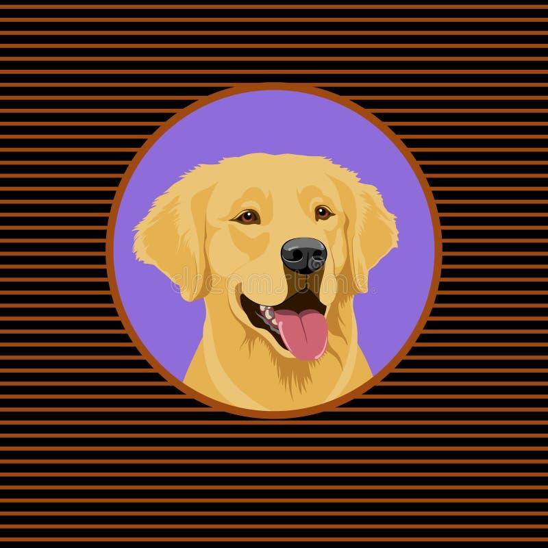 一只愉快的金黄拉布拉多猎犬 狗的纵向 库存例证