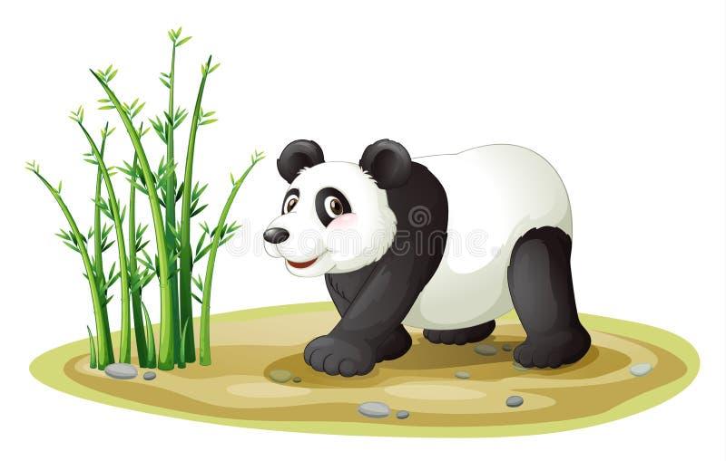 一只熊猫 皇族释放例证