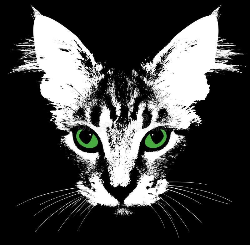 一只猫的头与嫉妒的。传染媒介 库存例证