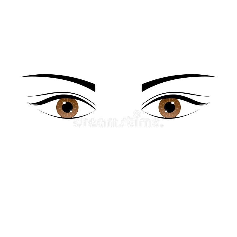 一只美好的棕色颜色白种人女性眼睛大开与眼眉和睫毛 向量例证
