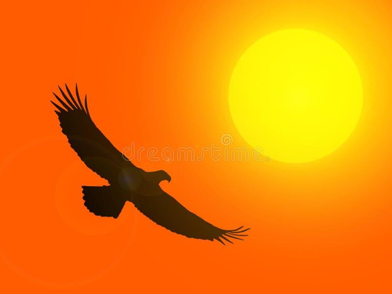 一只老鹰的剪影反对落日的 库存例证