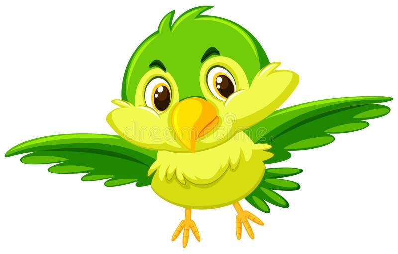 一只逗人喜爱的绿色鸟 库存例证
