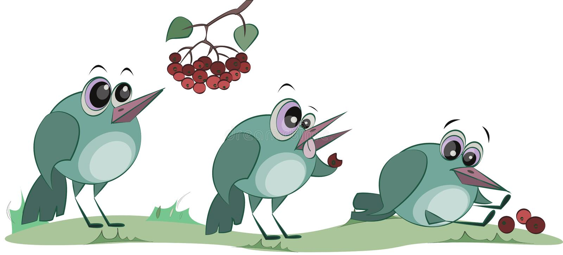 一只逗人喜爱的鸟吃着莓果 E r 库存例证