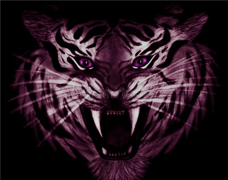 一只邪恶的白色和紫色老虎的特写镜头铅笔图与在黑背景隔绝的紫罗兰色眼睛的 向量例证