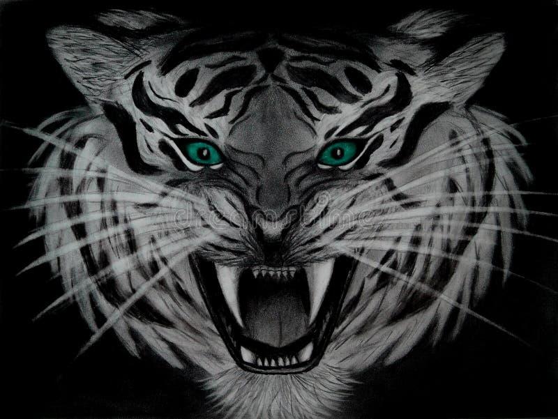 一只邪恶的白色老虎,在黑背景隔绝的危险动物的特写镜头铅笔图与蓝绿色眼睛的 皇族释放例证