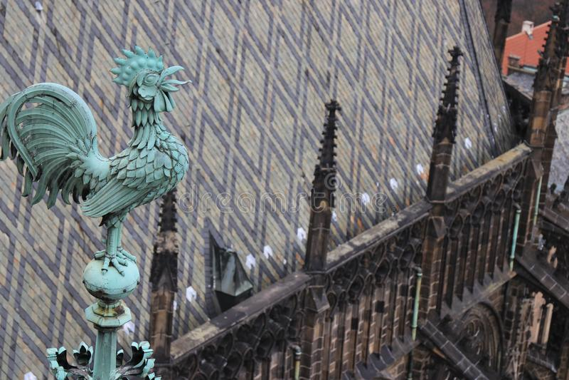 一只雄鸡的雕塑在一个历史大厦的在布拉格 库存图片