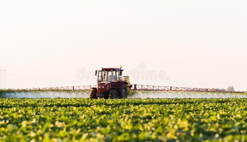 一台拖拉机的农夫有喷雾器的做年轻菜的肥料 库存图片