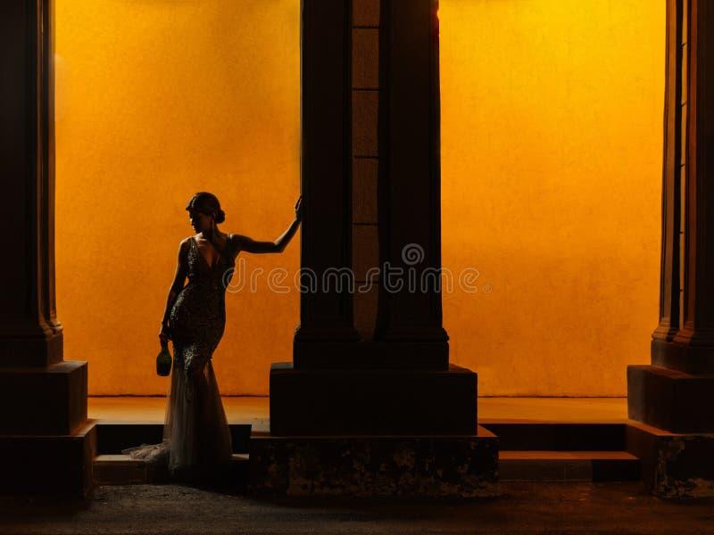 一名典雅和诱人的聪明地加工好的妇女的黑暗的图剪影一件传神闪耀的晚礼服的 图库摄影