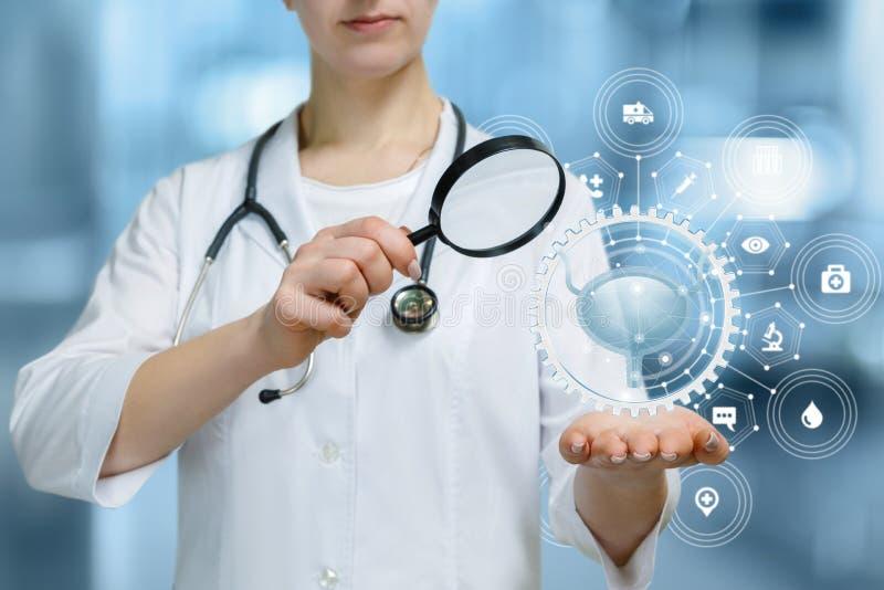 一名医护人员审查妇女的膀胱 免版税库存照片