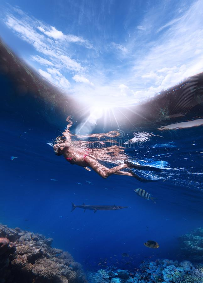 一名妇女潜航的一个面具的和鸭脚板下潜的到红海里看珊瑚和五颜六色的鱼 免版税库存照片
