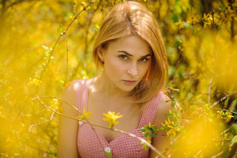 一名年轻白肤金发的妇女的画象在站立在黄色开花的树附近的一件桃红色礼服穿戴了 库存图片