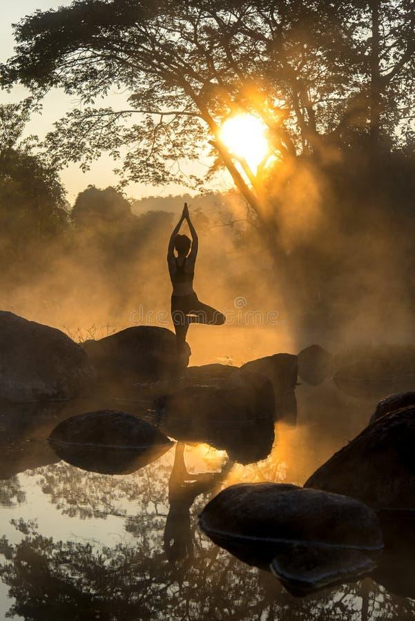 一名美丽的瑜伽妇女的剪影早晨 免版税库存照片
