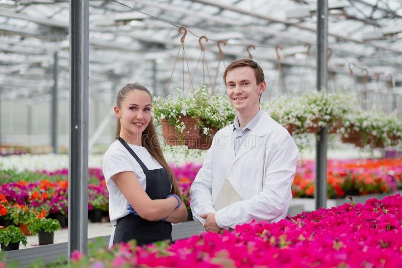 一名身着白大褂和黑围裙的年轻男女、科学家、生物学家或农艺学家对花卉进行检查和分析 免版税库存图片