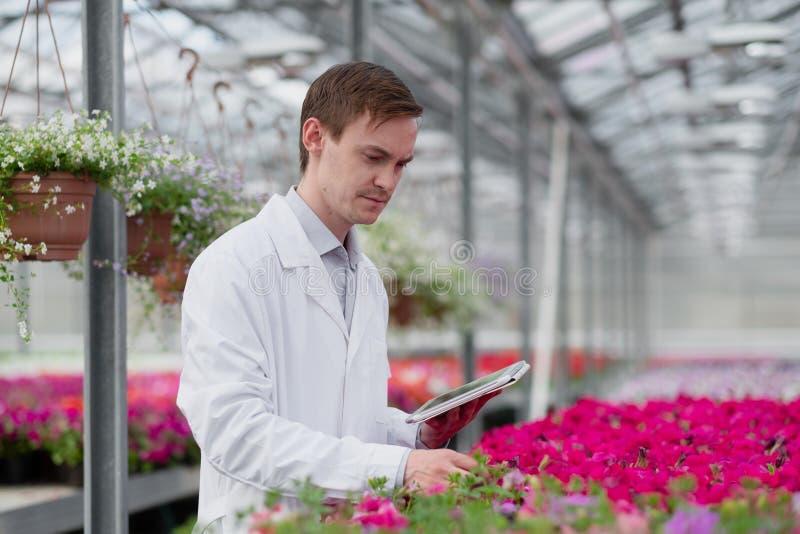 一名身穿白色外套的年轻男子、一名科学家或农学家,对植物中的花朵和绿色植物进行了检查和分析 免版税库存图片
