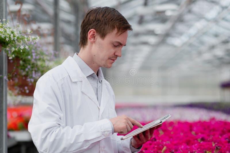 一名身穿白色外套的年轻男子、一名科学家或农学家,对植物中的花朵和绿色植物进行了检查和分析 库存图片