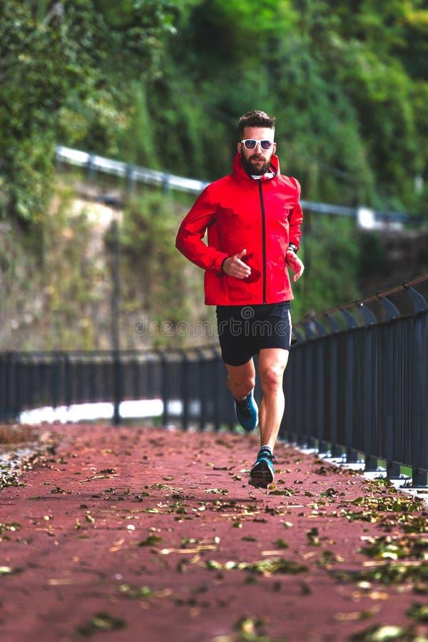一名运动员在秋天在自行车道上跑步 库存图片