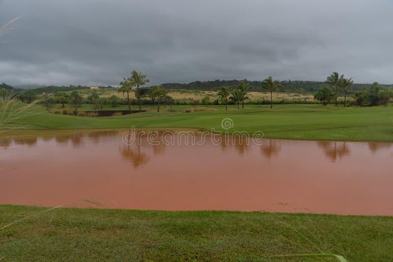 一场暴雨的后果在考艾岛,夏威夷的 免版税库存照片