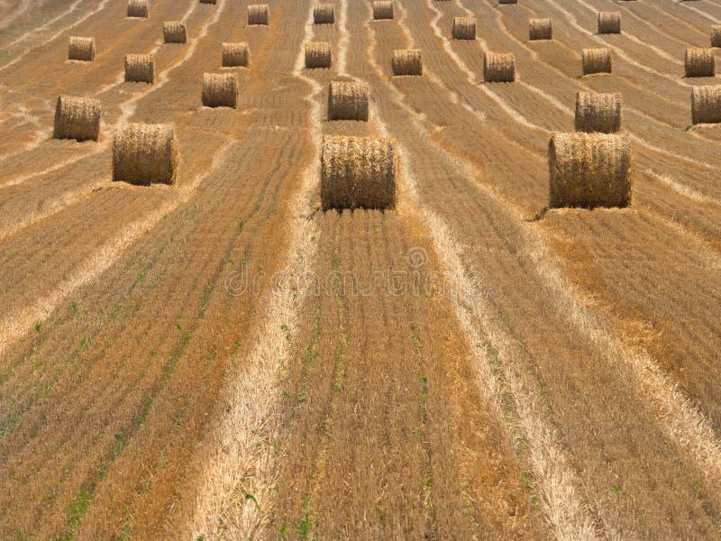 一块新被犁的麦田的风景与滚动的大包的干草 免版税库存图片
