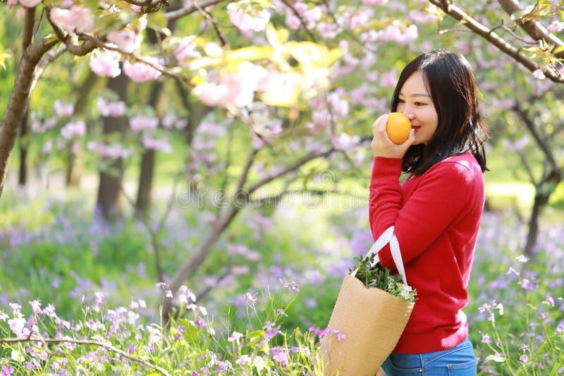 一块花田的亚裔中国妇女秀丽女孩在春天夏天秋天公园气味果子桔子享有舒适生活 免版税图库摄影