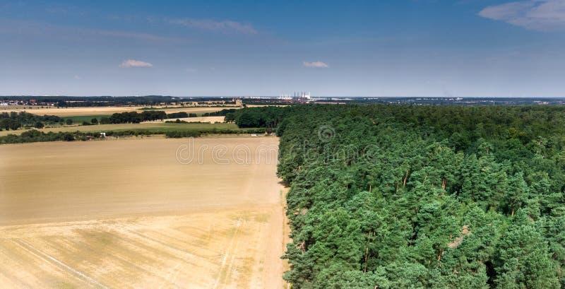 一块被收获的麦田的抽象图象,被划分在一个森林界限,在中部,与蓝天在背景中 库存图片