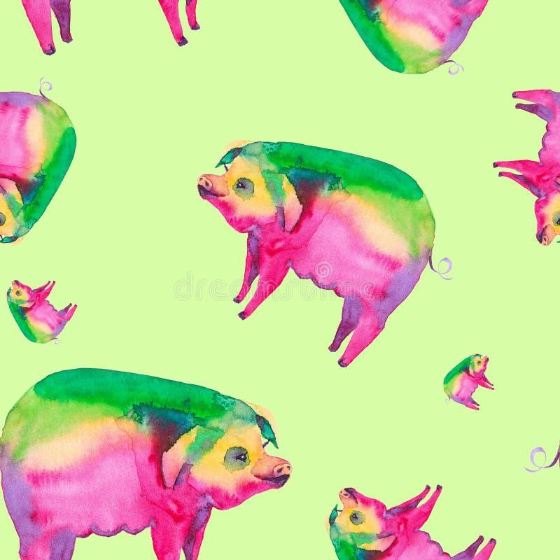 一头多彩多姿的猪的抽象水彩例证 查出在绿色背景 无缝的模式 向量例证