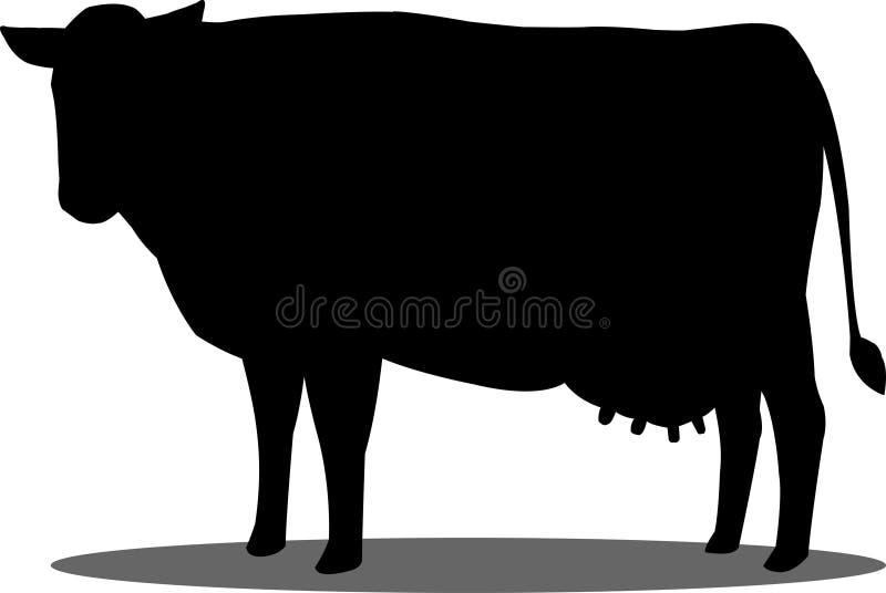 一头母牛的剪影在白色背景的 在白色背景隔绝的母牛 库存例证
