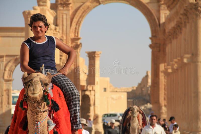 一头骆驼的男孩在扇叶树头榈古色古香的城市在叙利亚 库存照片