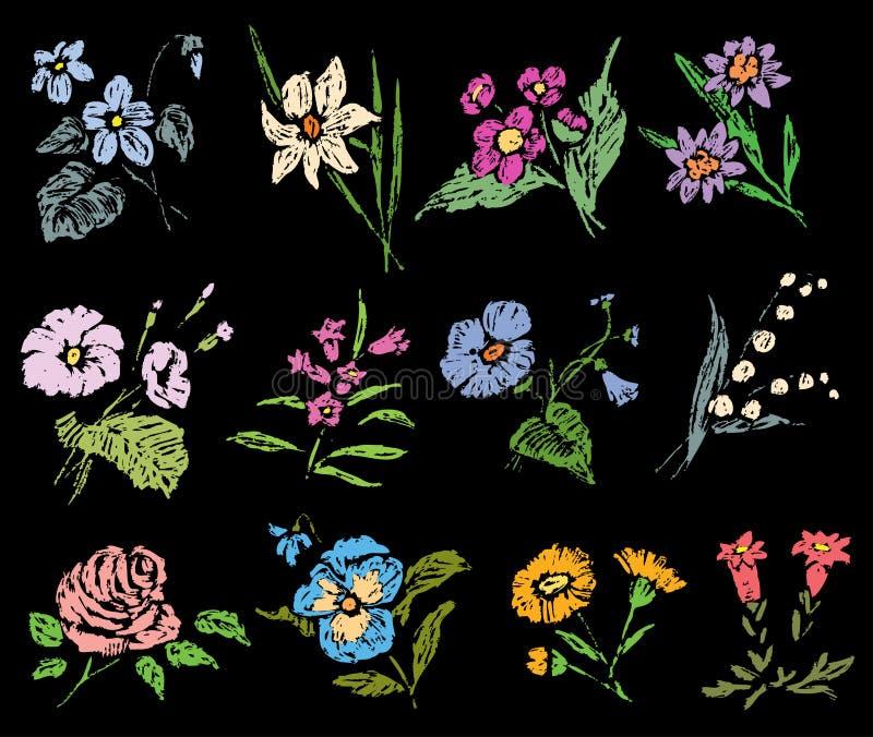 一套各种各样的花剪影  皇族释放例证