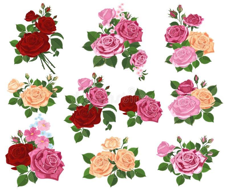 一套玫瑰花束在白色背景的 r 库存例证