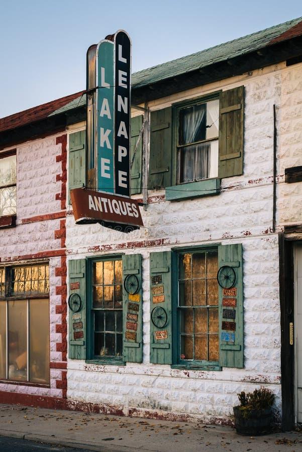 一家古董店在梅斯兰丁,新泽西 库存照片