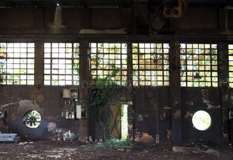 一家被放弃的工厂的内部有老机械和常春藤的在墙壁,窗口上和在一个half-open铁门 库存照片