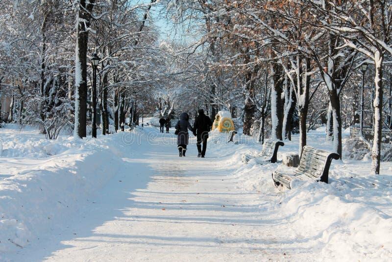 一对夫妇在冬天公园 库存图片