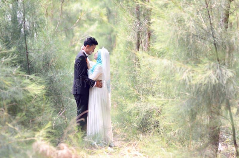 一对美好的马来的新娘和新郎夫妇的室外画象在庭院里 免版税库存图片