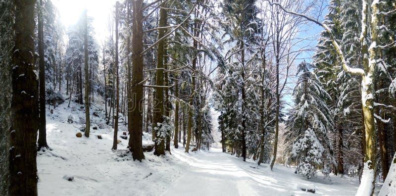 一山roud的全景在冬天 免版税图库摄影