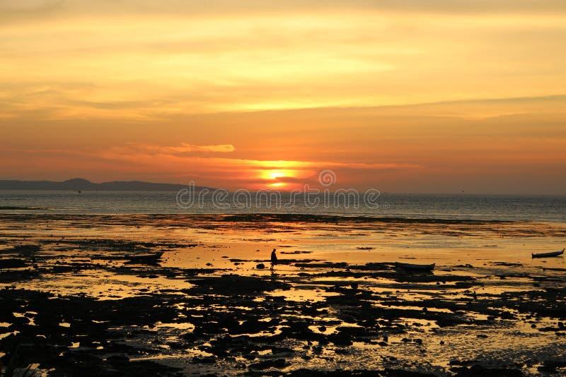 一幅美好的淡黄色红色日落全景 库存图片