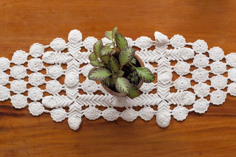 一幅花瓶和白色刺绣的植物在桌上 免版税库存图片