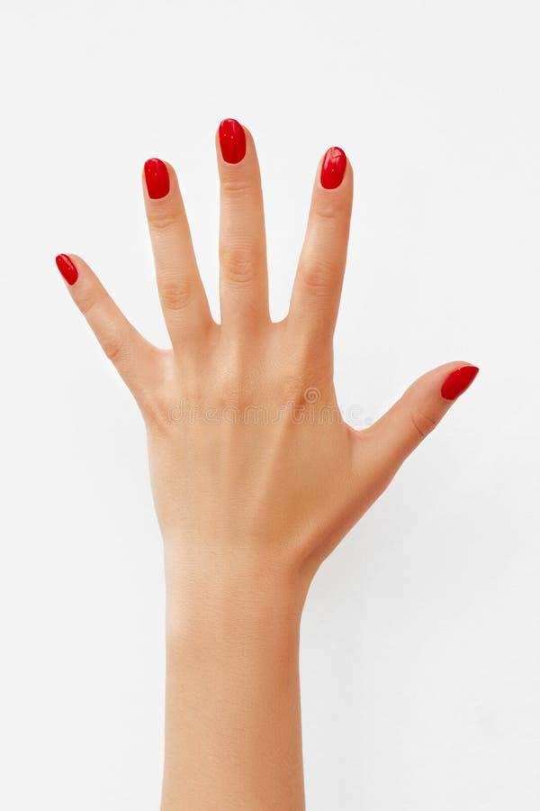 一年轻女人的手有红色修指甲的 妇女手陈列姿态 在白色背景隔绝的女性手五手指 免版税库存照片