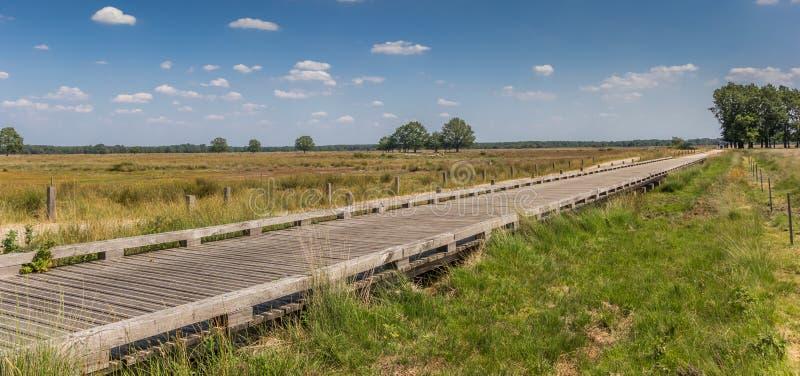 一座木自行车桥梁的全景在国立公园Dwingelderveld 免版税库存图片