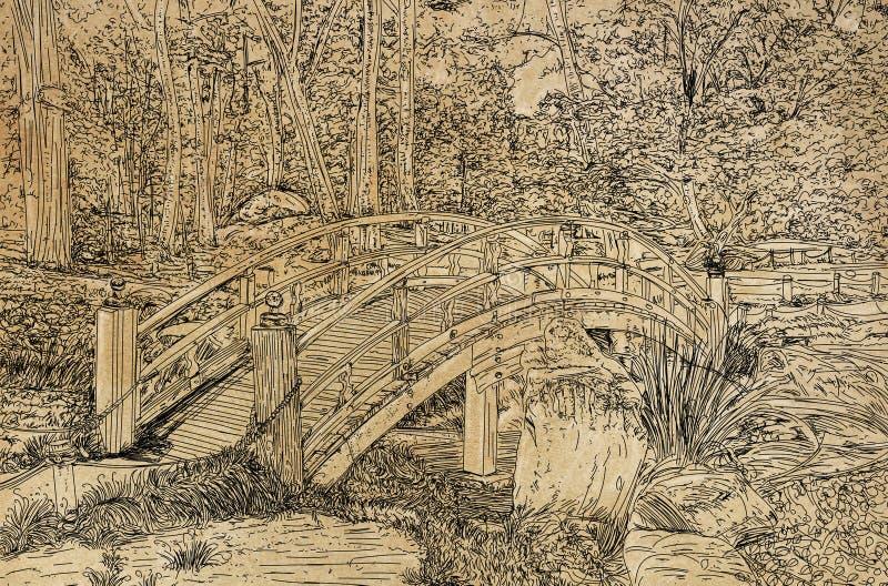 一座桥梁的线艺术图画在一条小小河的在公园 库存例证